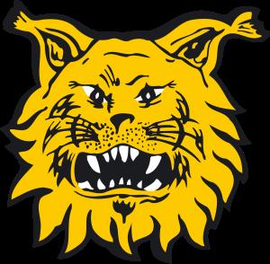 Ilves-logo-300x294