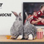 Bonus 20 zł za Wielkanocne kombi w LVbet
